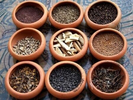 варианты растений