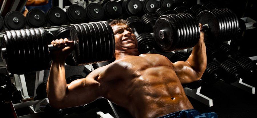 Как правильно использовать креатиновые добавки при силовых тренировках