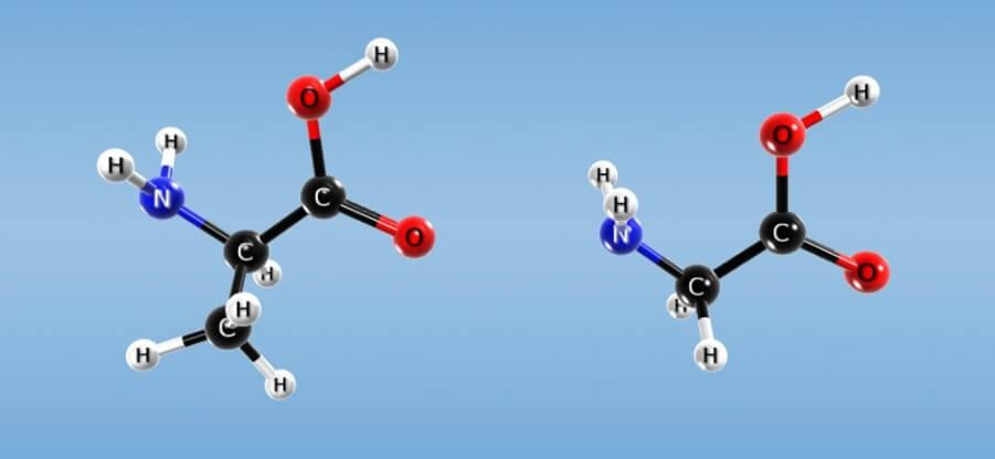 Каким образом формируются пептидные цепочки и другие элементы аминокислот