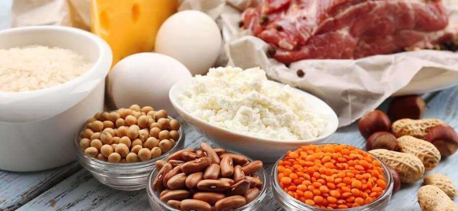 Какие продукты содержат растительный и животный белок