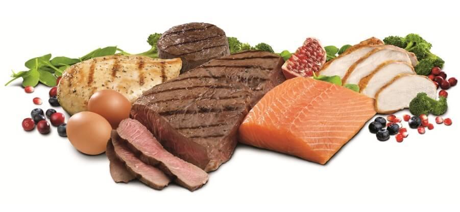В каких продуктах содержится максимальное количество протеина?