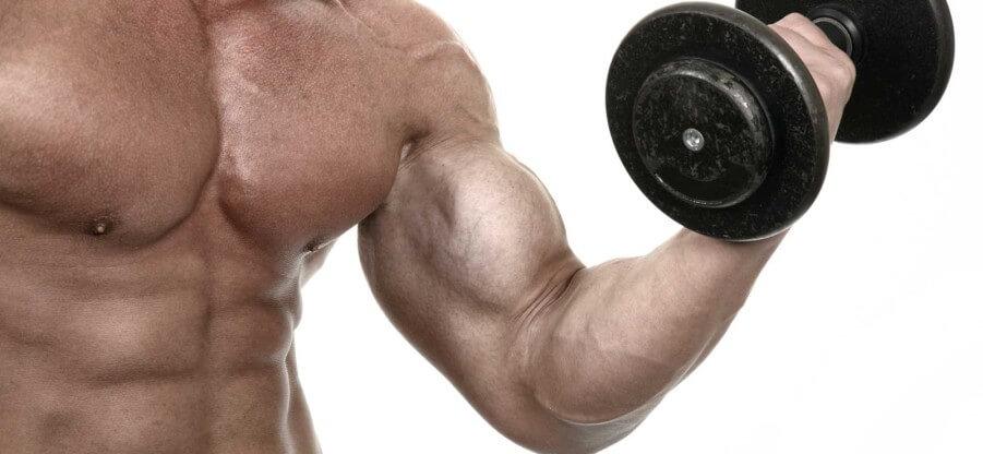 Грамотная прокачка мышц рук в домашних условиях или тренажерном зале