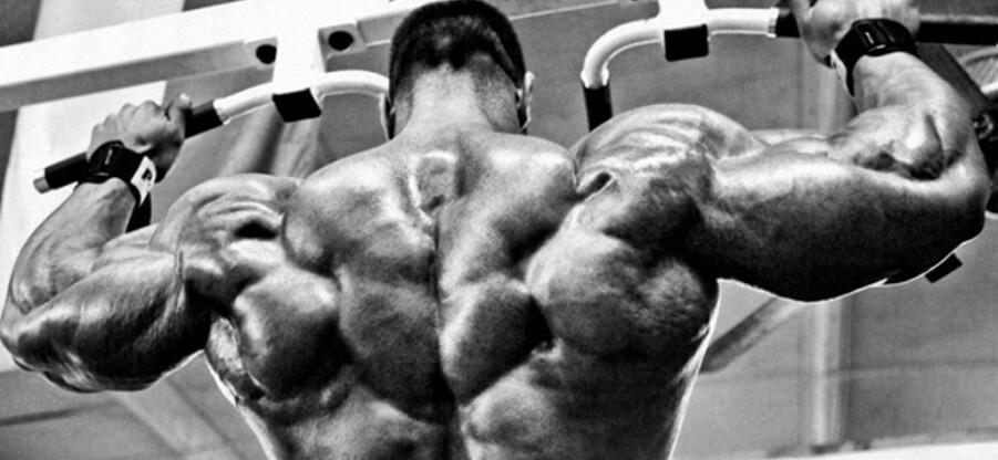 Какие группы мышц можно прокачать, используя разные варианты подтягиваний