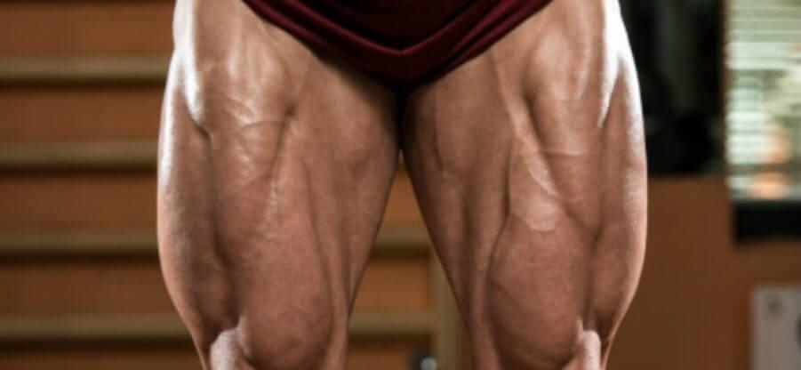 Особенности и нюансы анатомии мышц ног человека