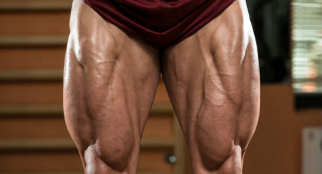 Кости нижней конечности. Анатомический атлас человека