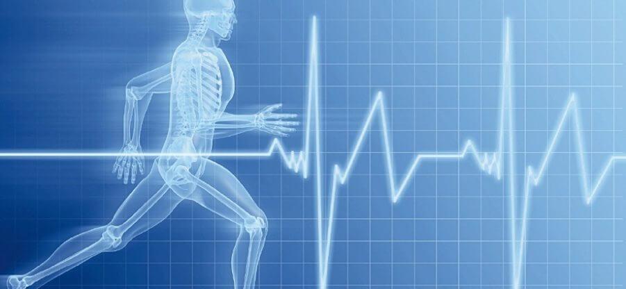 Какой должен быть пульс для эффективного сжигания лишнего жира?