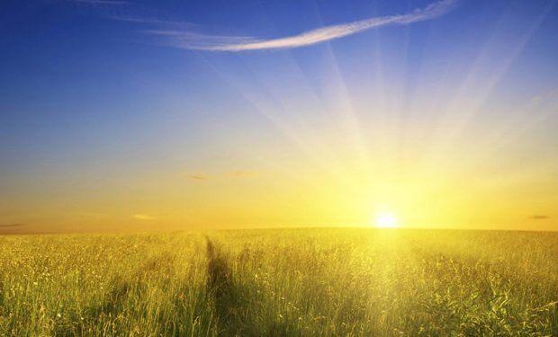 Солнце является источником витамина D