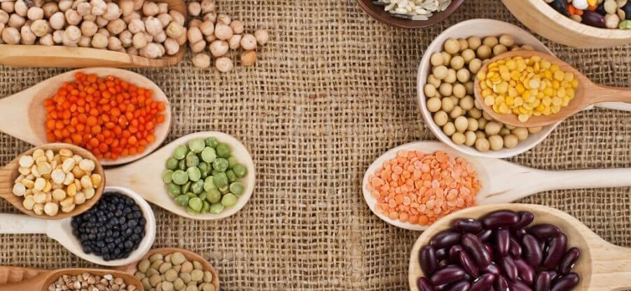 В каких продуктах питания содержится растительный белок?