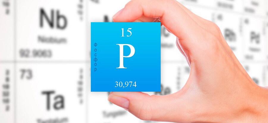 В каких продуктах и в каком количестве содержится фосфор?