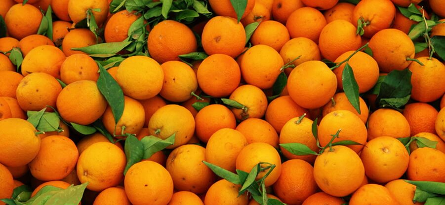 Количество углеводов, белков, жиров и калорийность одного апельсина