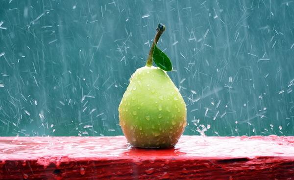 Плод под дождем