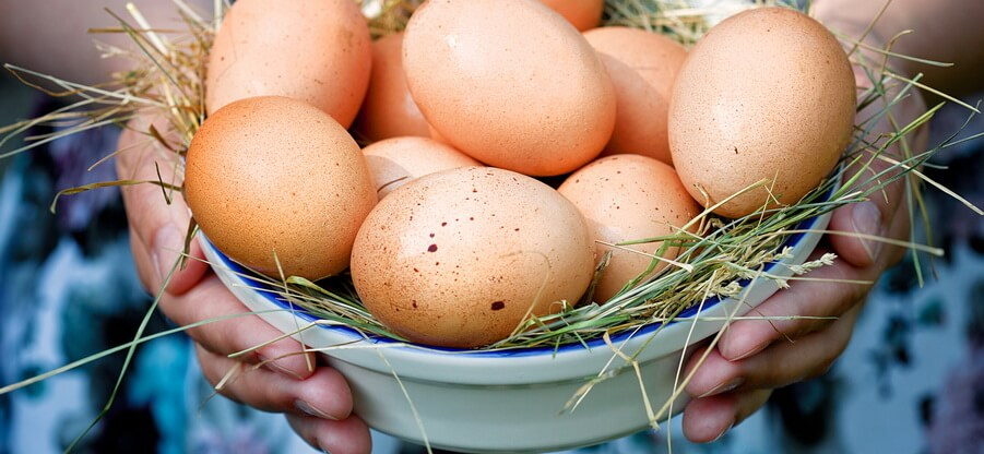 Сколько углеводов в желтке яйца