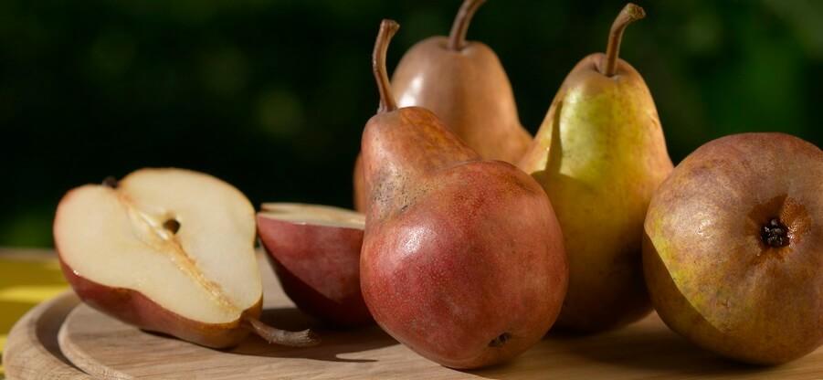Какие витамины содержатся в груше и какими свойствами она обладает?