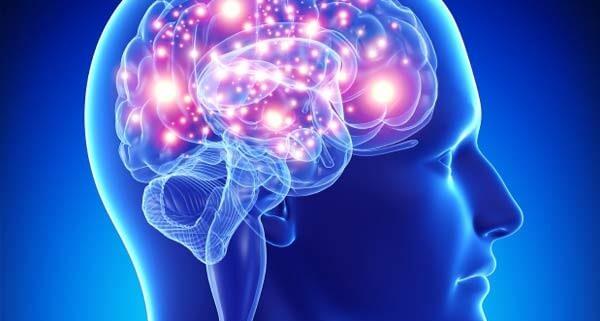 Улучшение работы головного мозга