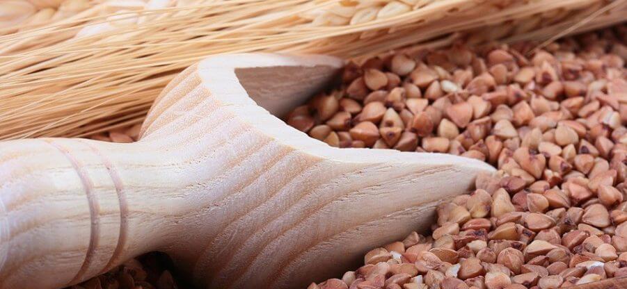 Содержание белка, витаминов и минералов в гречневой крупе