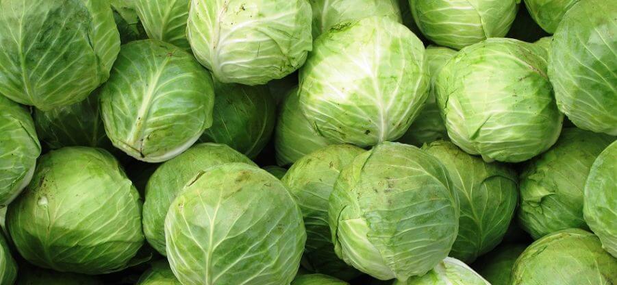 Какие витамины и минералы содержит капуста?