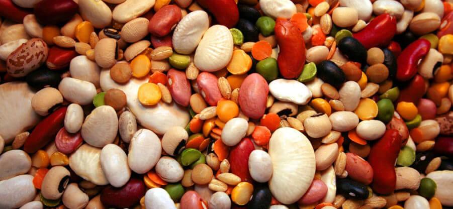 Сколько белка содержится в фасоли? Подробный состав продукта