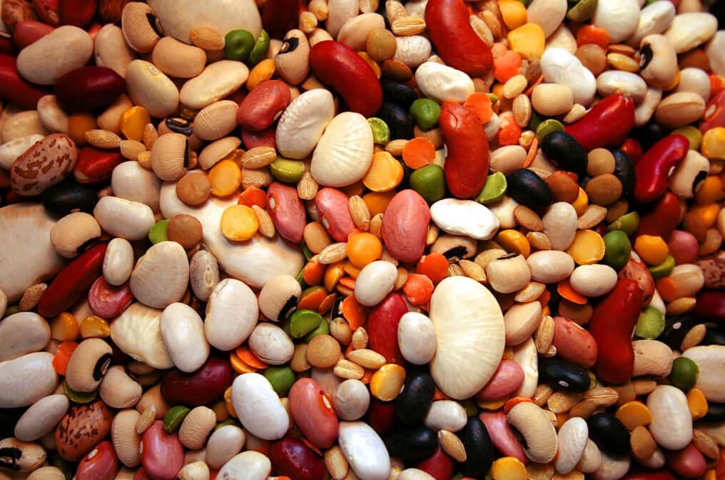 Калорийность фасоль бобы. Химический состав и пищевая ценность.
