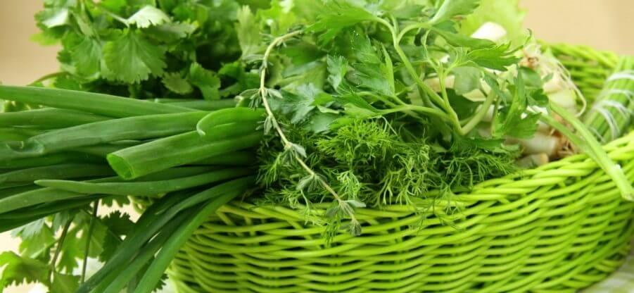Продукты питания, содержащие витамин К в большом количестве