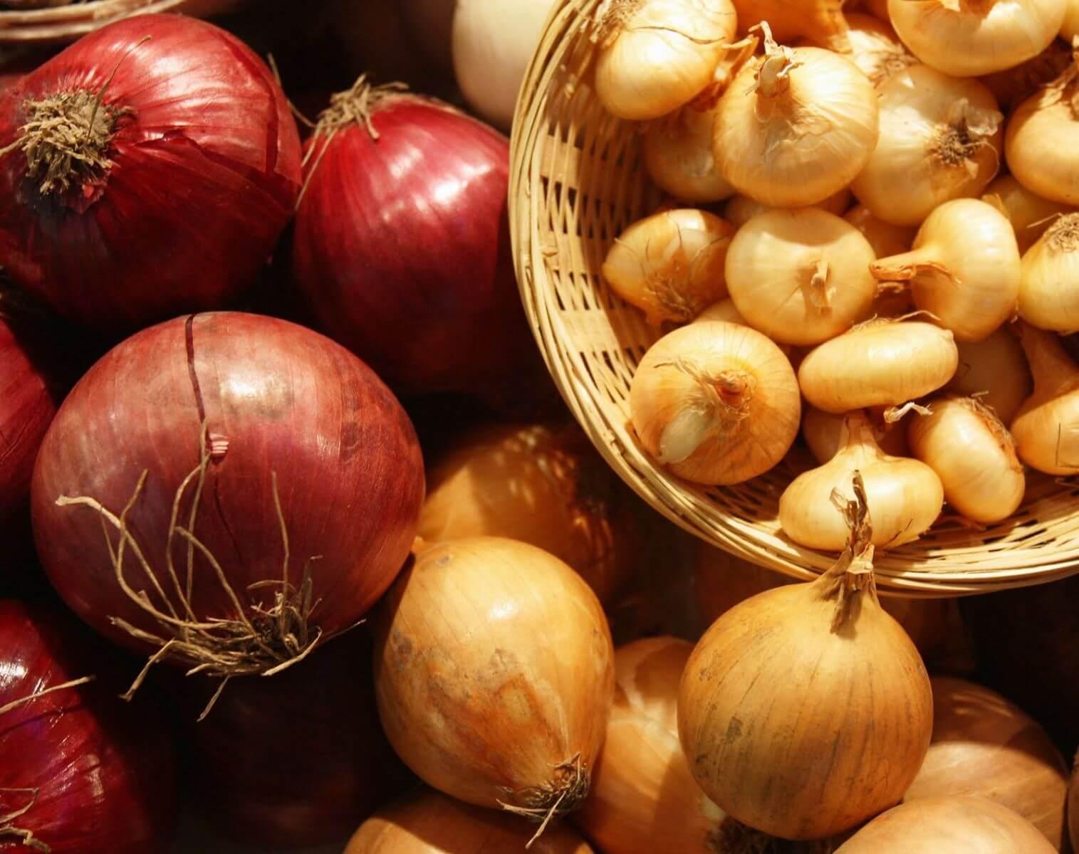 Какие витамины содержатся только в луке
