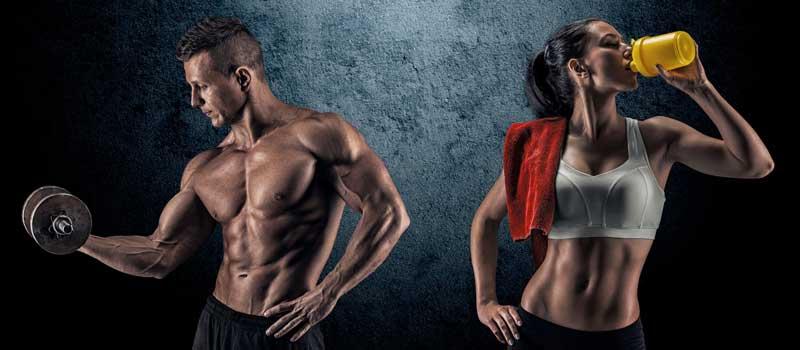 Спортивное питание для роста мышц новичкам