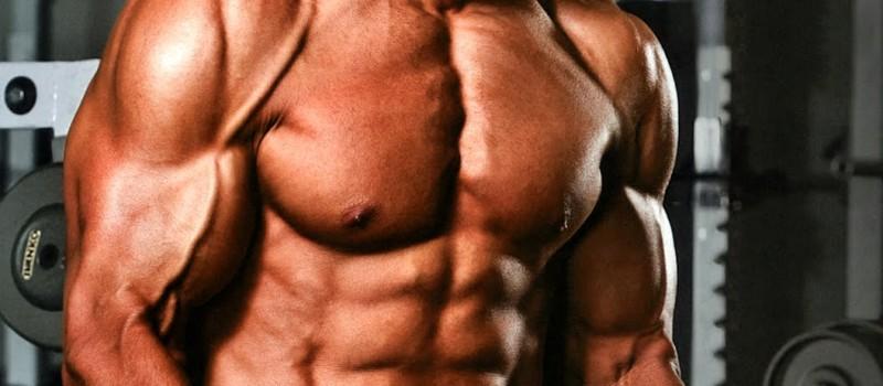 Лучшие витамины для роста мышечной массы мужчинам