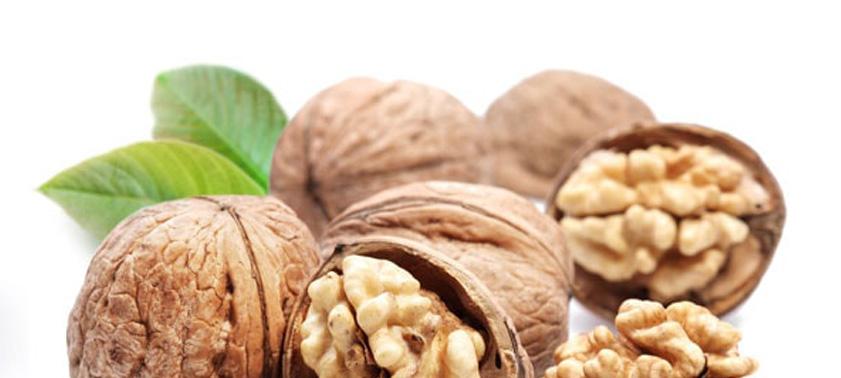 Грецкие орехи: польза и вред, состав, калорийность