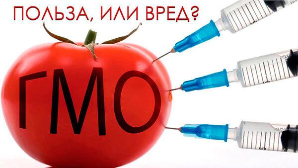 вред и польза ГМО
